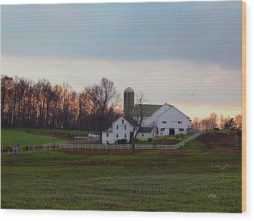 Amish Farm At Dusk Wood Print