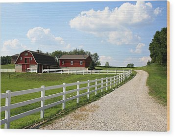 Amish Farm Wood Print by Gary Bydlo