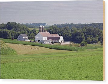 Amish Farm Wood Print by Joyce Huhra
