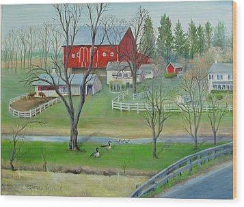 Amish Farm Wood Print by Oz Freedgood