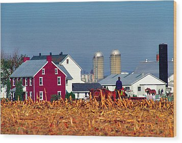 Amish Farm Wood Print by Thomas R Fletcher