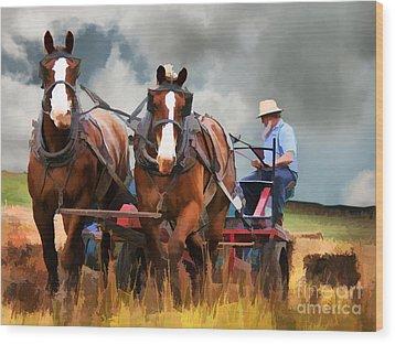Amish Farmer Wood Print