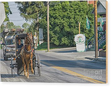 Wood Print featuring the photograph Amish Girl On The Road by Patricia Hofmeester