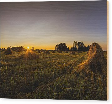 Wood Print featuring the photograph Amish Harvest by Chris Bordeleau