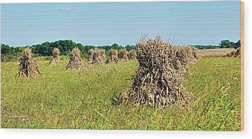Wood Print featuring the photograph Amish Harvest by Cricket Hackmann