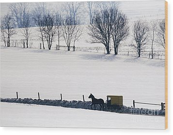 Amish Horse And Buggy In Snowy Landscape Wood Print by Jeremy Woodhouse