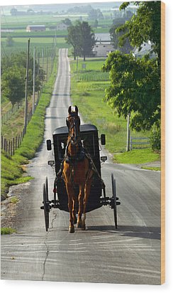 Amish Morning Commute Wood Print