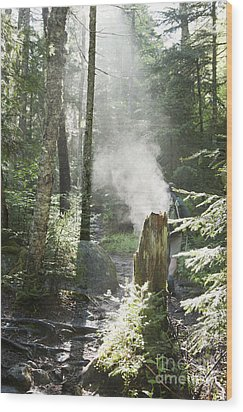 Ammonoosuc Ravine Trail - White Mountains New Hampshire Usa Wood Print