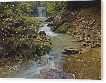 Amos Falls Wood Print