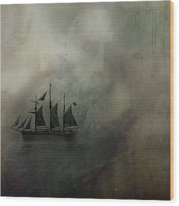 Amundsen And Fram Wood Print by Andy Walsh