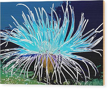 An Abstract Scene Of Sea Anemone 1 Wood Print by Lanjee Chee