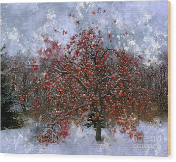 An Apple Of A Day Wood Print by Julie Lueders