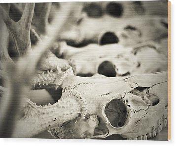 An Echo Of Mortality Wood Print by Rebecca Sherman