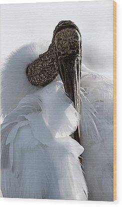 An Intimate Portrait Wood Print by Cyndy Doty