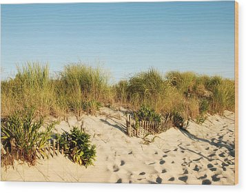 An Opening In The Fence - Jersey Shore Wood Print
