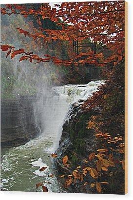 An Upper Letchworth Autumn Wood Print