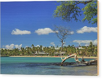 Anaehoomalu Bay Wood Print by James Eddy