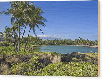 Anaehoomalu Bay Wood Print by Ron Dahlquist - Printscapes