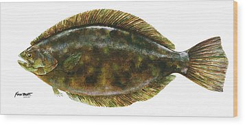 Anatomical Flounder Wood Print