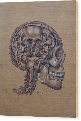 Anatomy Of A Schizophrenic Wood Print by Joe Dragt