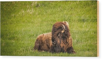 Wood Print featuring the photograph Ancient Bison by Rikk Flohr