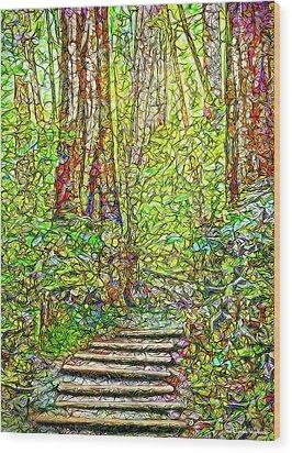 Wood Print featuring the digital art Ancient Forest Path - Tamalpais California by Joel Bruce Wallach
