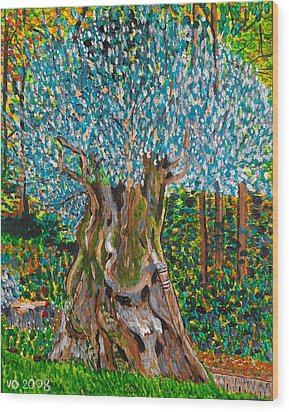 Ancient Olive Tree Wood Print by Valerie Ornstein