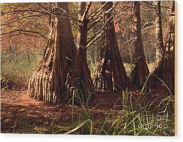 Wood Print featuring the photograph Ancient Tree At Lake Murray by Tamyra Ayles