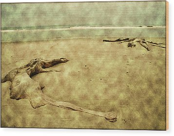 Ancient Tree Roots Wood Print by Bonnie Bruno