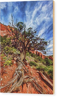 Wood Print featuring the photograph Ancient Wisdom by ABeautifulSky Photography
