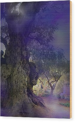 Wood Print featuring the photograph Ancient Witness Tree Garden Of Gethsemane Vision by Anastasia Savage Ealy