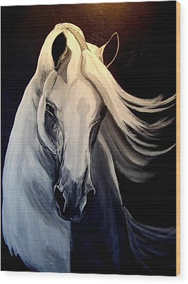 Andalusian Stallion Wood Print by Glenda Smith