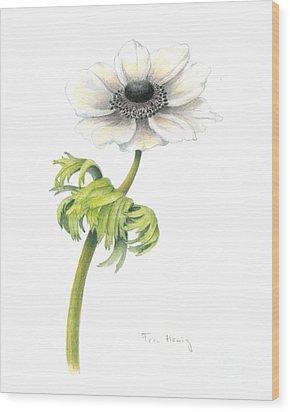 Anemone Wood Print by Fran Henig