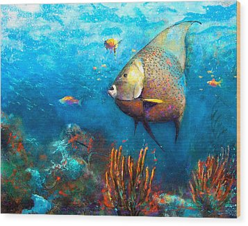 Angel Fish Wood Print by Andrew King