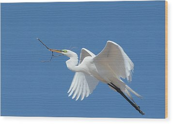 Wood Print featuring the photograph Angel In Flight by Fraida Gutovich