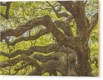 Wood Print featuring the photograph Angel Oak I by Steven Ainsworth