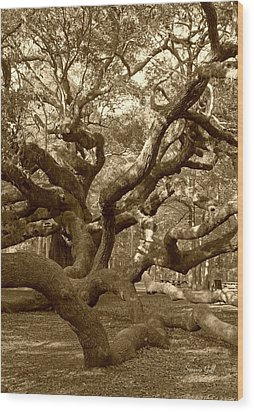 Angel Oak In Sepia Wood Print