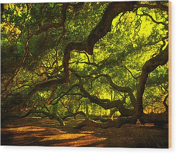 Angel Oak Limbs 2 Wood Print