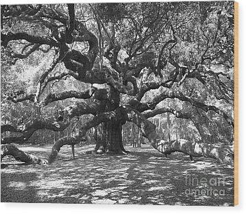 Angel Oak Tree Black And White Wood Print by Melanie Snipes