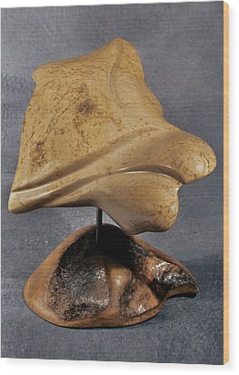 Angel Stone Wood Print by Lonnie Tapia