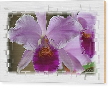 Angel Wings Orchid Wood Print by Madeline  Allen - SmudgeArt