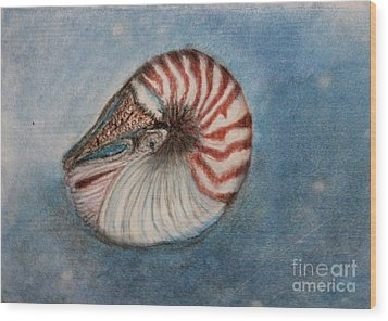 Wood Print featuring the painting Angel's Seashell  by Kim Nelson