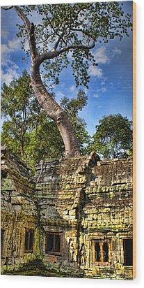 Angkor Wat And Tree Wood Print by Louise Fahy