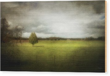 Angustown Pasture Wood Print by Cynthia Lassiter