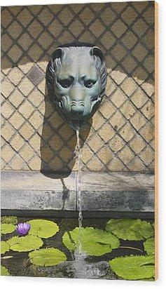 Animal Fountain Head Wood Print by Teresa Mucha