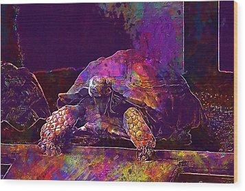 Wood Print featuring the digital art Animal Turtle Zoo  by PixBreak Art