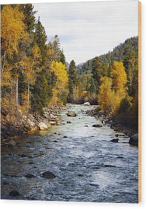Wood Print featuring the photograph Animas River by Kurt Van Wagner