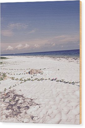 Anna Maria Island Beyond The White Sand Wood Print by Jean Marie Maggi