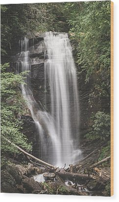 Anna Ruby Falls Wood Print by David Collins