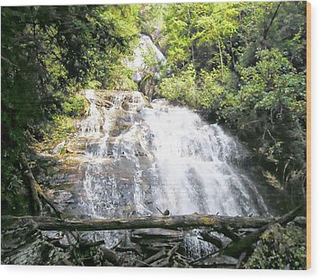 Wood Print featuring the photograph Anna Ruby Falls by Jerry Battle